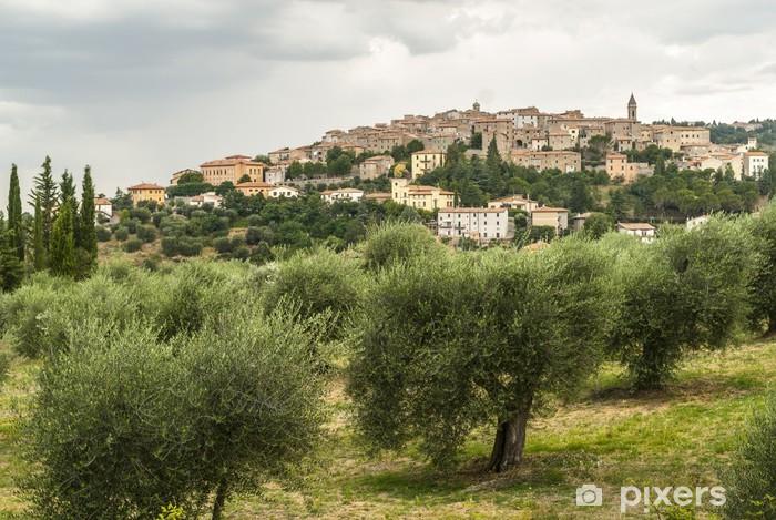 Vinyl-Fototapete Panoramablick von Seggiano, in der Toskana - Europa