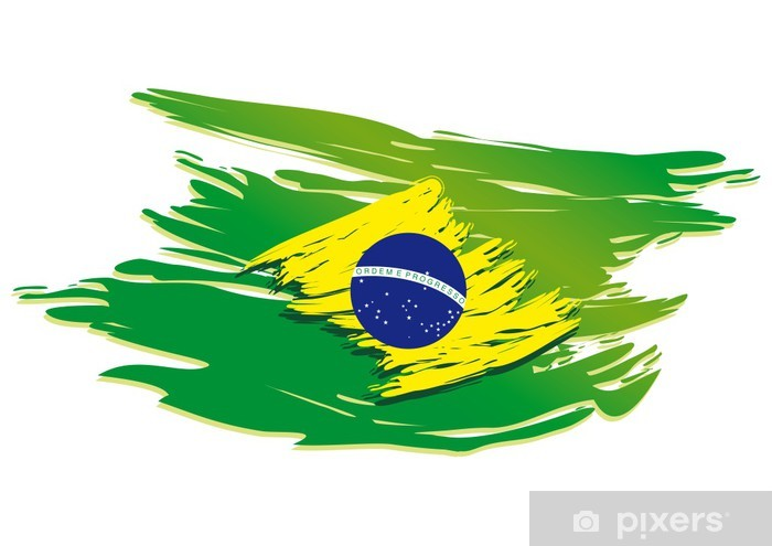 brazil flag stylized Vinyl Wall Mural - American Cities