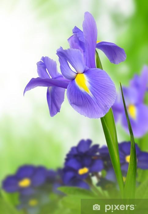 purple iris flower on green background Vinyl Wall Mural - Flowers