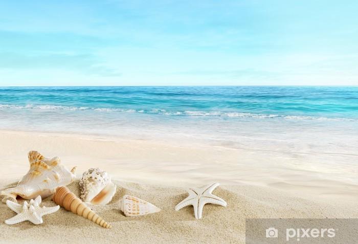 Zelfklevend Fotobehang Landschap met schelpen op een tropisch strand - Zee en oceaan
