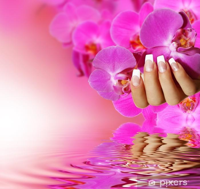 Fototapeta winylowa French Nails - różowe tło -