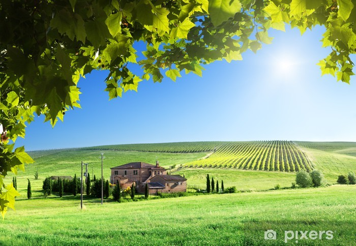 Tuscany landscape with typical farm house Pixerstick Sticker - Themes