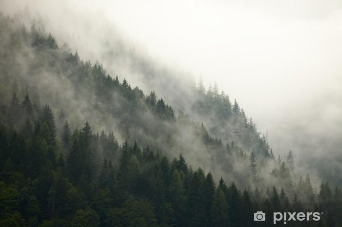 Papier peint vinyle Arbres de montagne dans la brume - iStaging