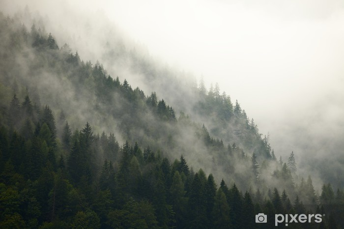 Sticker Pixerstick Arbres de montagne dans la brume - iStaging