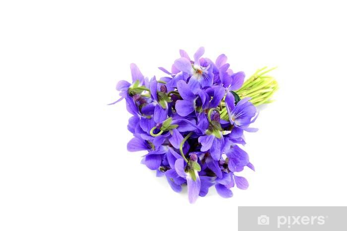 Vinylová fototapeta Violet kytice izolovaných na bílém - Vinylová fototapeta