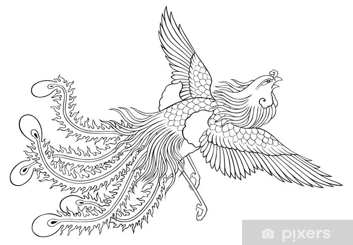 Phoenix Chinese Style For Coloring Wall Mural Pixers We Live To