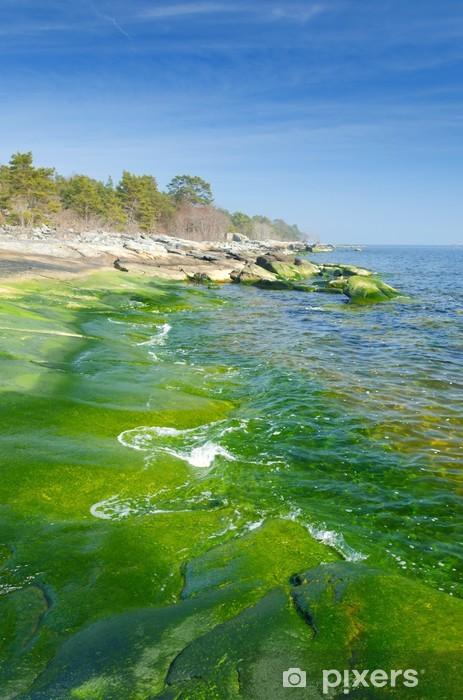 Vinyl-Fototapete Vertikale Landschaft der grünen Küste - Jahreszeiten