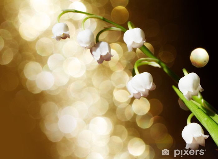 Pixerstick Sticker Lily of the valley - Planten