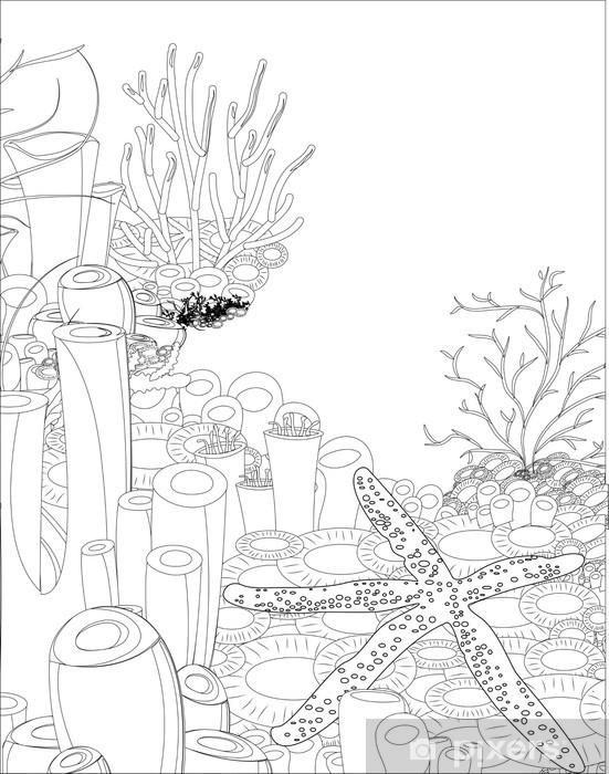 Mercan Ile Denizyıldızı Boyama Kitabı Duvar Resmi Pixers Haydi