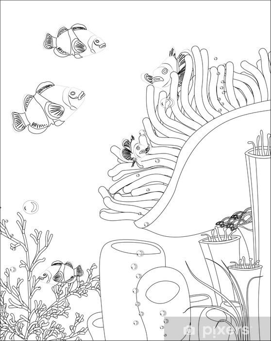 Mercan Ile Palyaço Balığı Boyama Kitabı Duvar Resmi Pixers