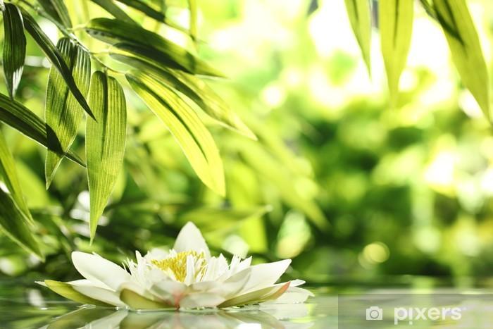 Fototapeta samoprzylepna Lilia wodna - Bambusy