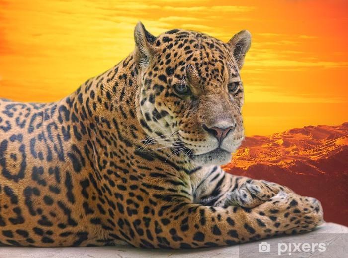 Pixerstick Sticker Leopard op een log tegen een zonsondergang te liggen - Zoogdieren