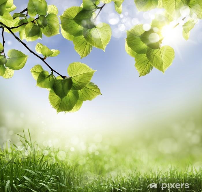Plakat Wiosną tła - Tła