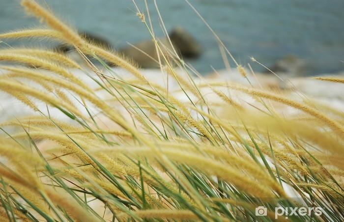 Zelfklevend Fotobehang Grof gras - Water