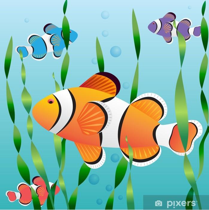 värikäs kala