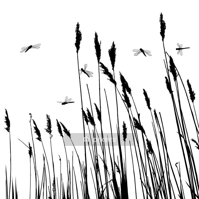 Real grass silhouette and few dragonflies - vector Wall Decal - Plants