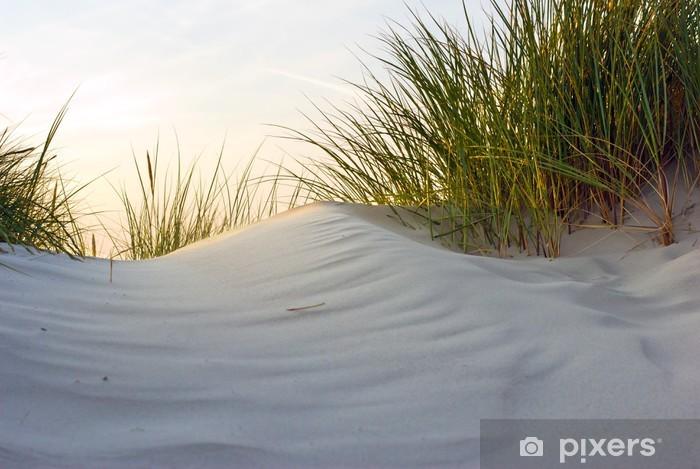 Papier peint vinyle Dune dans la lumière du soir - Religion