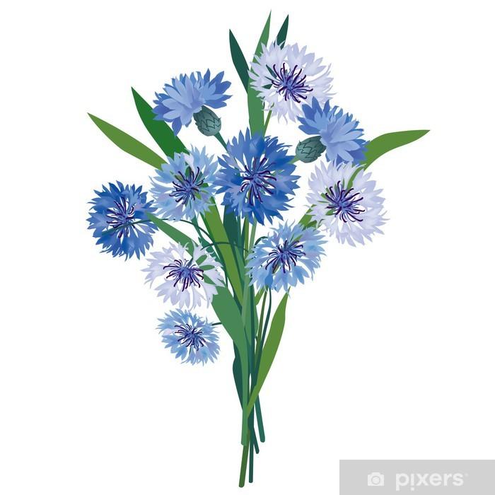 a1d9ec2ad7f3e1 Fototapeta winylowa Bukiet kwiatów. kwiatów ilustracji wektorowych. chaber  izolowane - Kwiaty