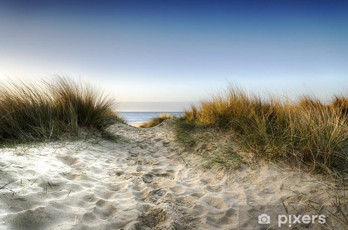 Pixerstick Sticker Pad door de duinen - iStaging