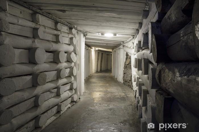 Fototapeta winylowa Podziemny tunel w Kopalni Soli - Tematy