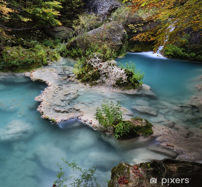 Plakat Las jesienią - Europa