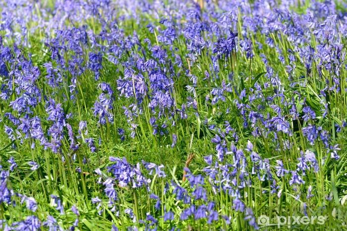 bluebells Door Sticker - Flowers