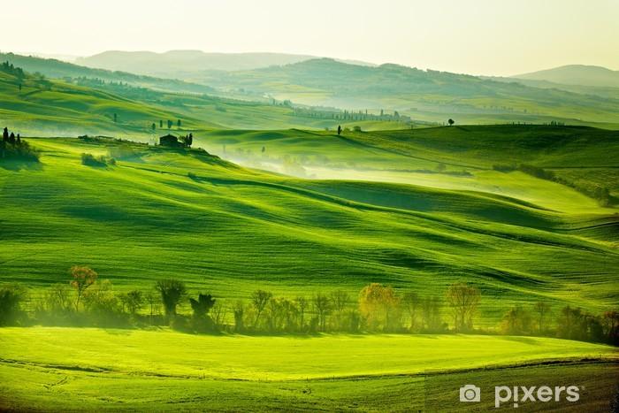 Afwasbaar Fotobehang Het heldergroene platteland van Toscane - Weiden, velden en gras