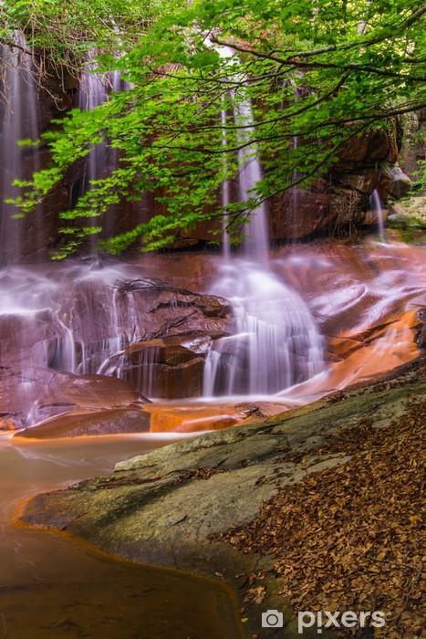Vinyl-Fototapete Wasserfall mit Greens - Themen