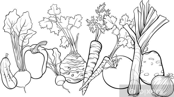Boyama Kitabi Icin Sebze Grup Illustrasyon Duvar Resmi Pixers