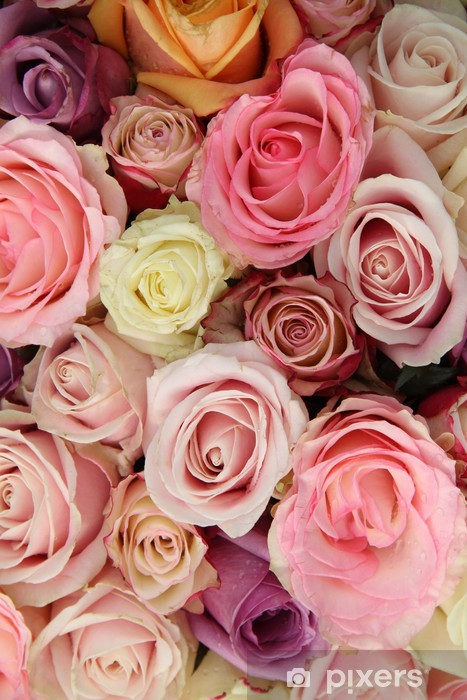 Wedding Roses In Pastel Colors Wall Mural Pixers We Live To Change