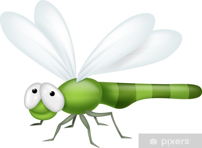 Vinyl-Fototapete Dragonfly Cartoon - Andere Andere