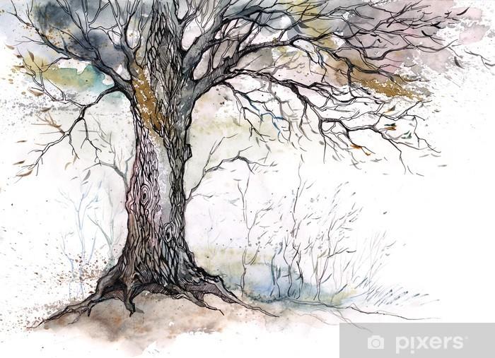Fototapet av Vinyl Gamla träd -