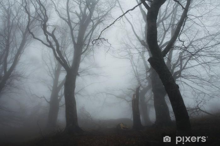 Fotomural Estándar Misty bosque - Estaciones