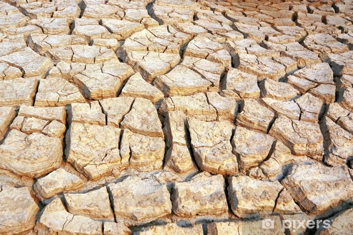 Papier peint vinyle La terre sèche et aride - Textures