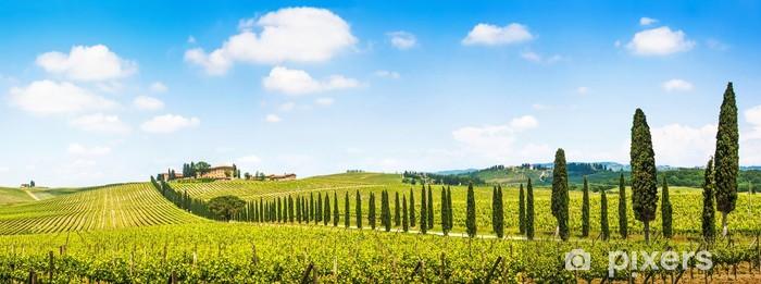 Fototapeta winylowa Piękny krajobraz z winnic, Chianti, Toskania, Włochy - Tematy