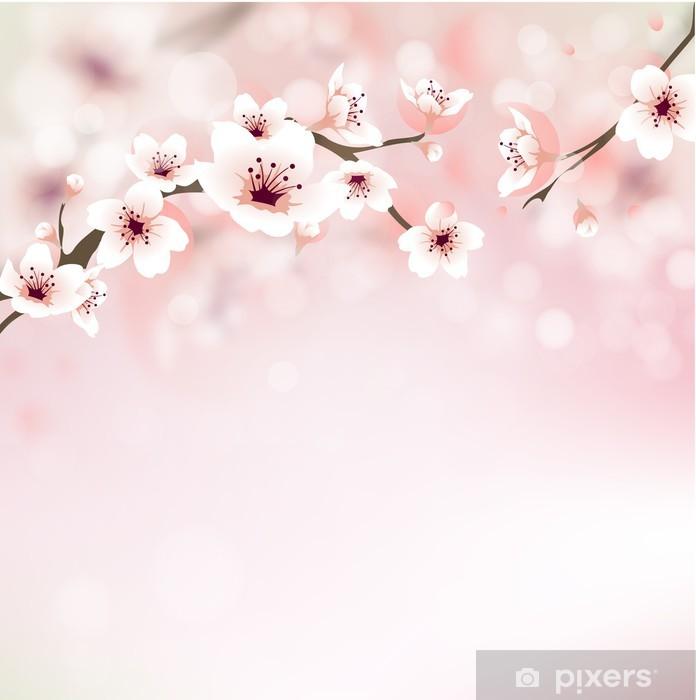 Carta da parati fiore di ciliegio biglietti di auguri for Carta parati vinile