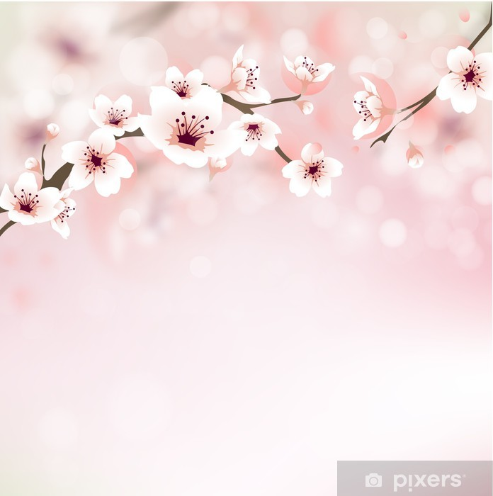 papier peint fleur de cerisier carte de voeux pixers nous vivons pour changer. Black Bedroom Furniture Sets. Home Design Ideas