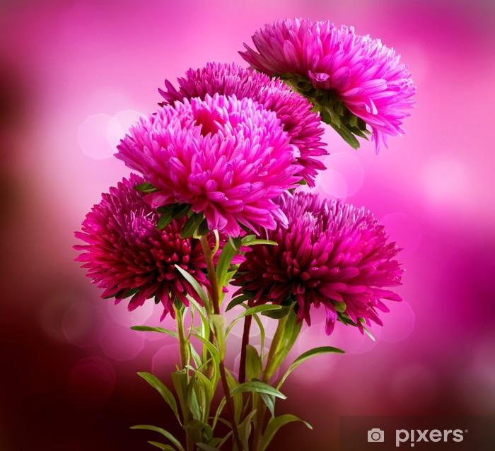 Fototapeta winylowa Aster Kwiaty Art Design Bouquet - Kwiaty