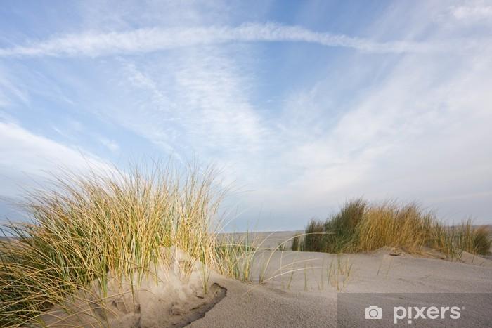 Fototapeta winylowa Wydmy i beachgrass - Europa