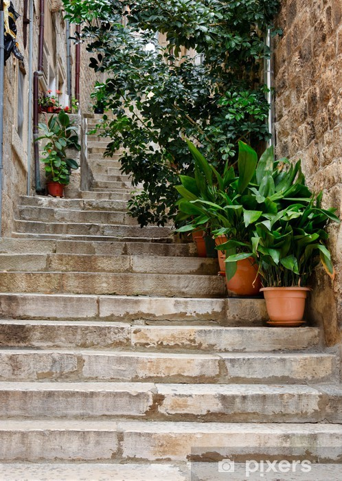 Fototapeta winylowa Dubrovnik. Aleja - Europa