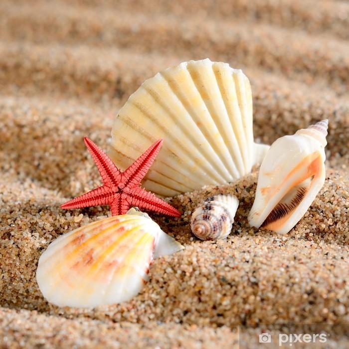 Zelfklevend Fotobehang Zee ster en schelpen op het strand - Vakantie