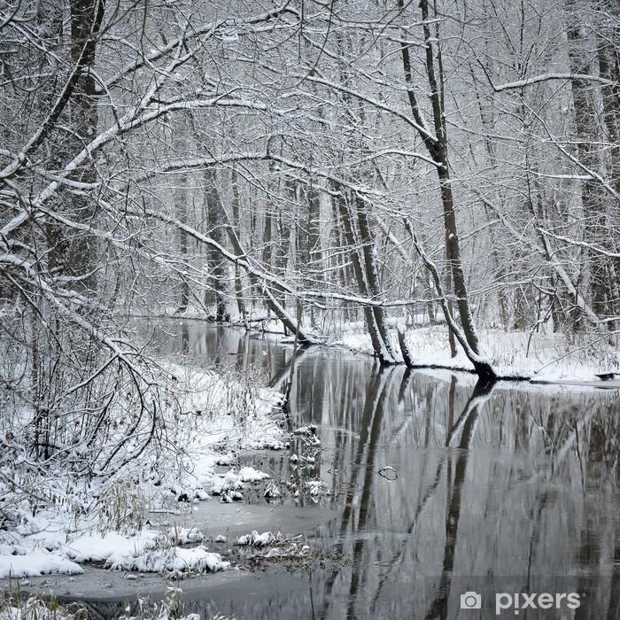 Papier peint vinyle Rivière foresr en hiver - Thèmes
