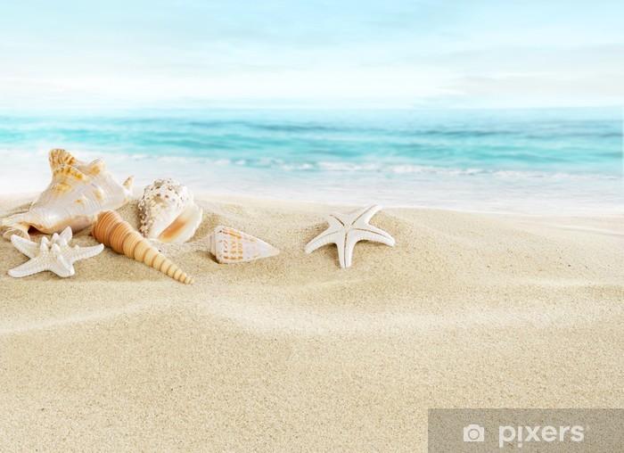 Shells on sandy beach Pixerstick Sticker - Holidays