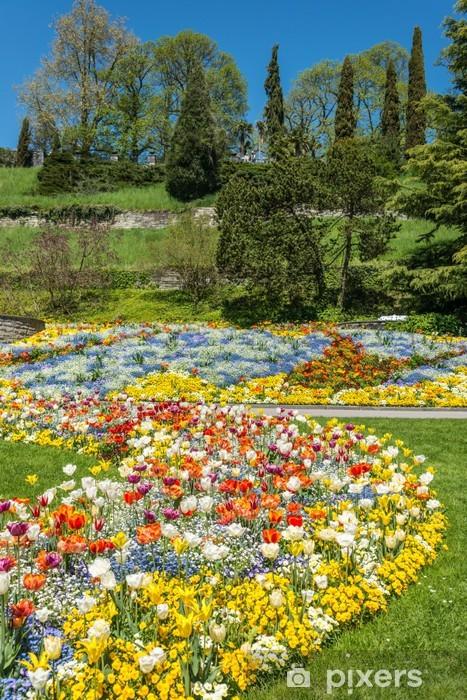 Vinyl-Fototapete Gartenlandschaft - Blumen