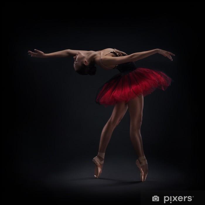 Nálepka Pixerstick Žena baletní tanečník - Témata