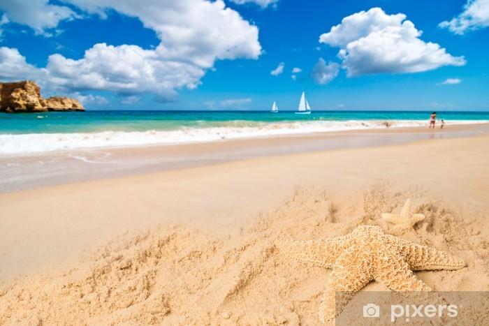 Fotomural Estándar Estrella de mar - Vacaciones