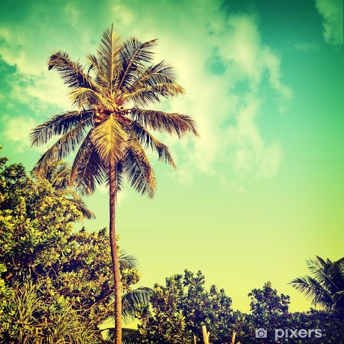 Nature-59 Pixerstick Sticker - Palm trees