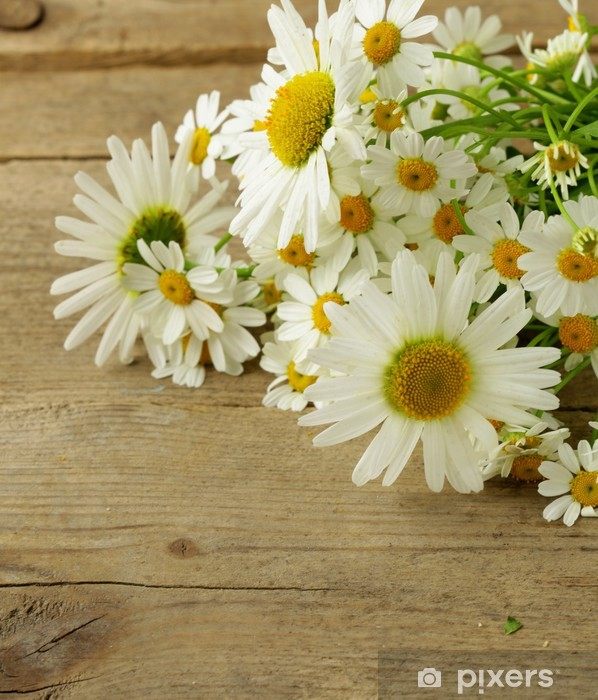 Naklejka Pixerstick Bukiet świeżych stokrotek na tle drewniane - Kwiaty