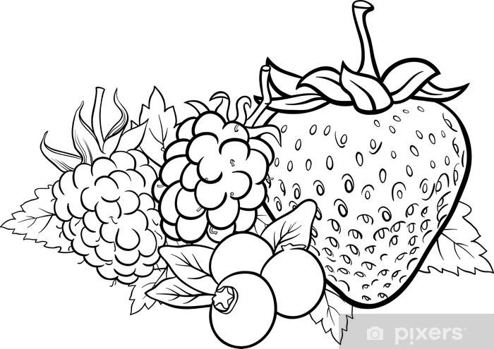 Boyama Kitabi Icin Berry Meyveleri Illustrasyon Cikartmasi