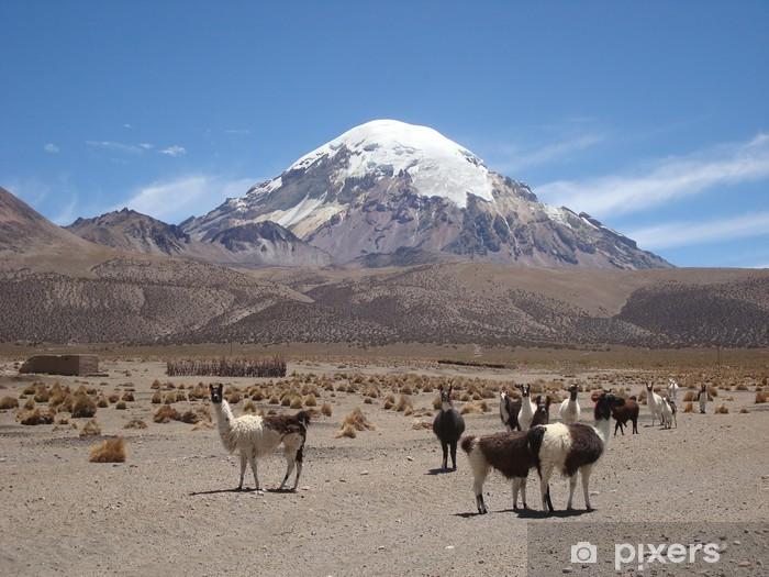Adesivo Pixerstick Sajama, Volcan d'Amérique latine. - Montagne